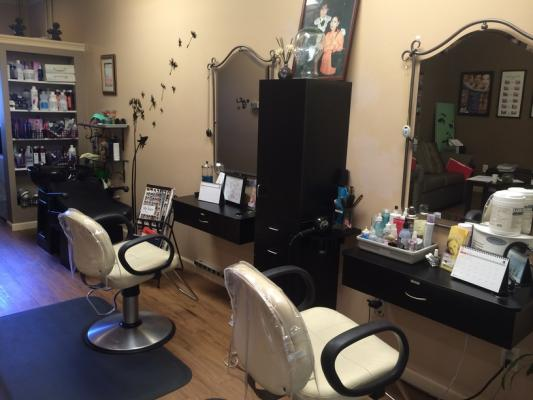 East Bay, Fremont Well Established Skin Hair And Nail Care Salon For Sale