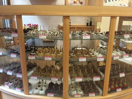 Orange County Candies And Chocolate Shop Franchise For Sale