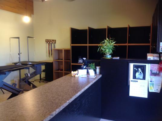 Pet Grooming Salon - Loyal Customers - Established Business For Sale