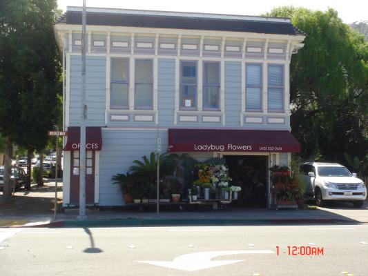 Marin County Flower Shop - Very Well Established For Sale