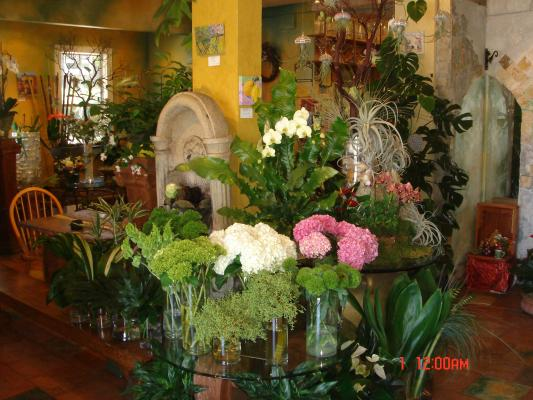 Flower Shop - Very Well Established Business For Sale