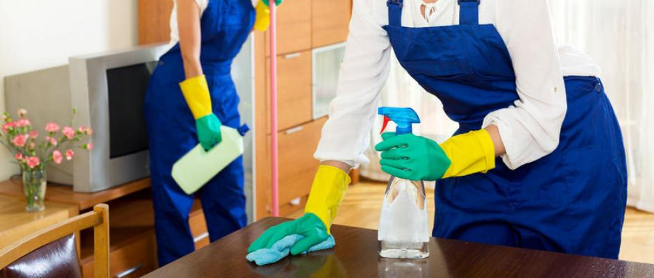 Orange County - Home Based Residential Cleaning Company - Absentee Run For Sale