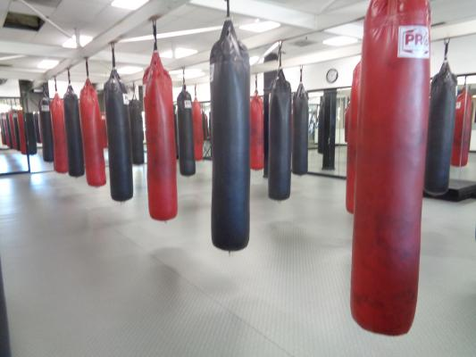 Health And Fitness Club - Independent, Profitable Business For Sale