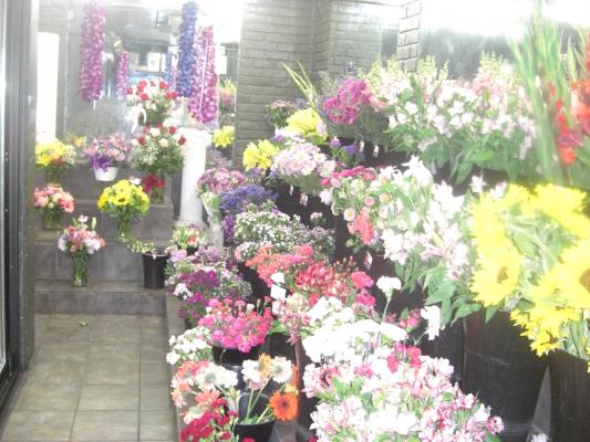 Bakersfield, Kern County Franchise Flower Retailer For Sale