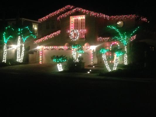 Christmas Light Decor Service Business For Sale