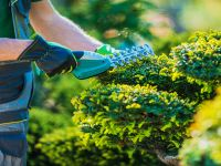 Selling A Landscaping Business