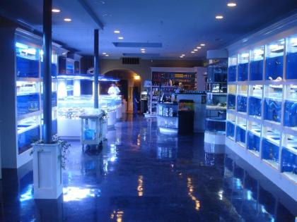 Tropical fish store aquarium store business opportunity for Fishing store san francisco