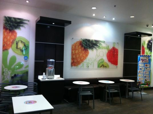 San Diego County Area Yogurtland Frozen Yogurt Franchise For Sale