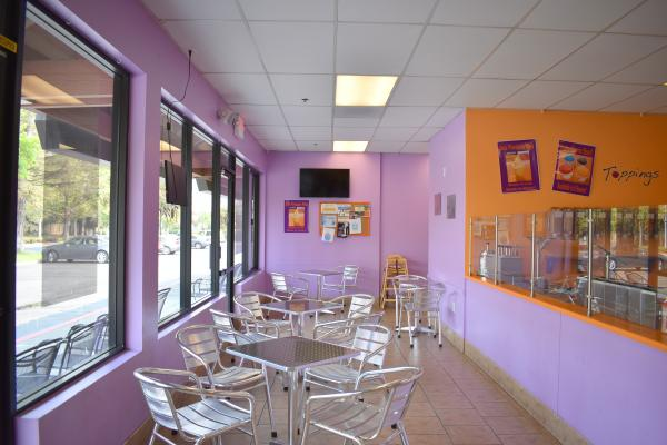 Frozen Yogurt And Smoothie Shop Business For Sale