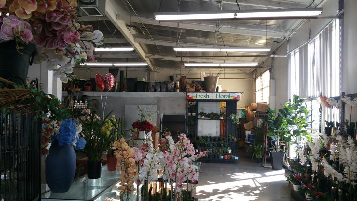 Santa Ana, Orange County Wholesaler Florist - 25 Years Established Business For Sale