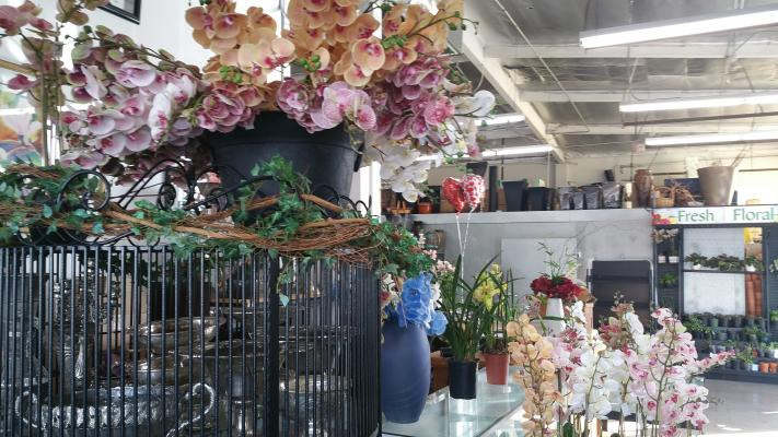 Wholesaler Florist - 25 Years Established Company For Sale