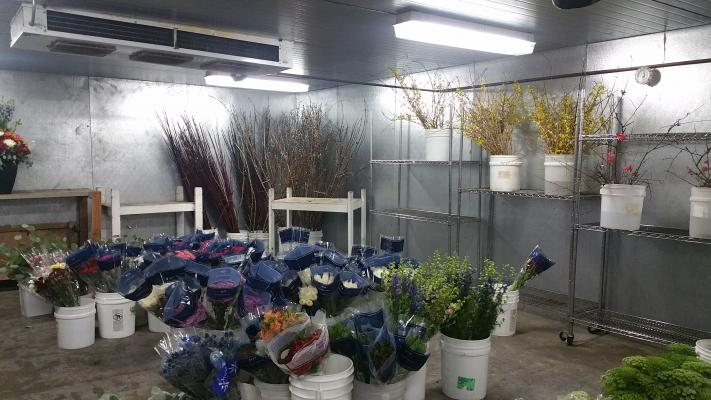 Wholesaler Florist - 25 Years Established Business Opportunity