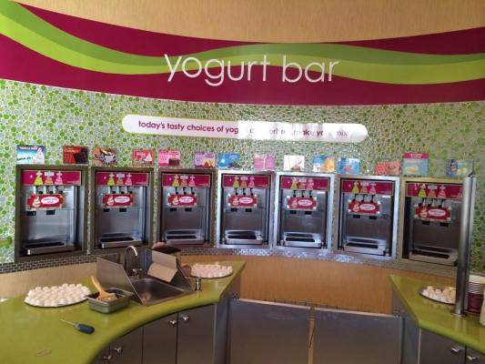 Newport Coast, Orange County Frozen Yogurt Franchise For Sale