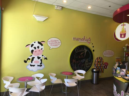 Selling A San Diego Area Self Serve Yogurt Franchise - Absentee Run