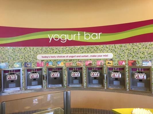 Self Serve Yogurt Franchise - Absentee Run Business Opportunity