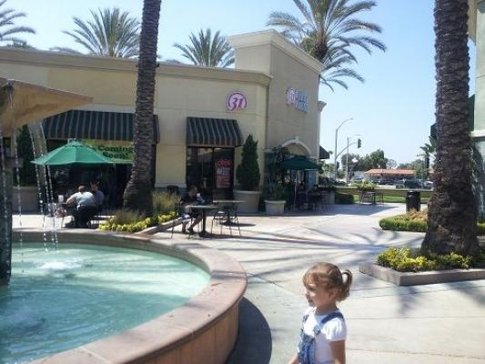 Baskin Robbins Ice Cream Franchise In Food Court Business For Sale