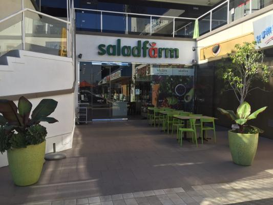 Los Angeles Salad Farm Restaurant Franchise For Sale