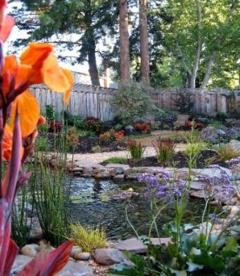Contra Costa County Landscaper Full Service For Sale