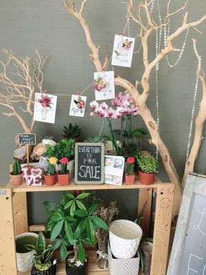 Beverly Hills, LA County Flower Shop - Steady Customers Business For Sale