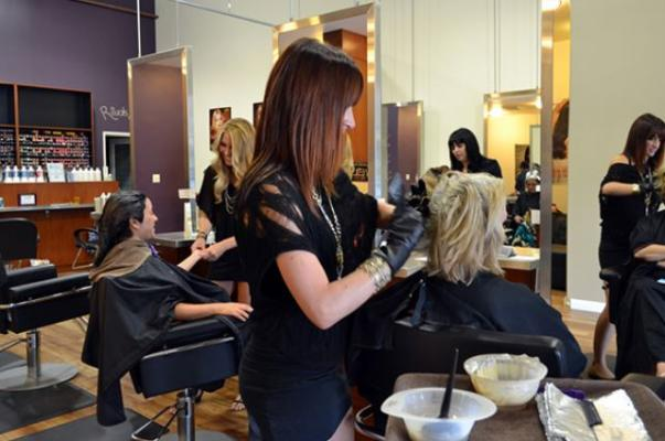 Santa Clara County Franchise Beauty School - Federal Financial Aid For Sale