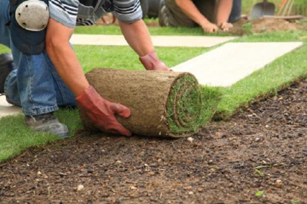 Los Angeles Area Commercial Landscape Maintenance And Installation For Sale