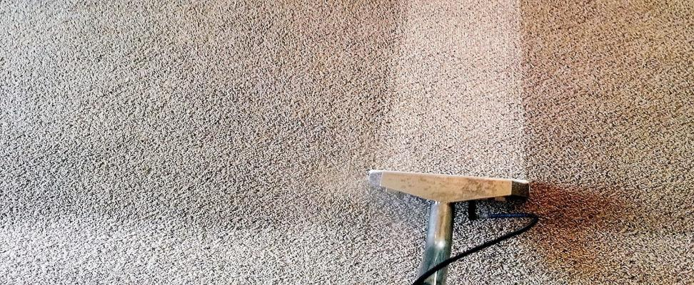 Orange County Area Carpet Cleaning - Commercial - Residential - Flood For Sale
