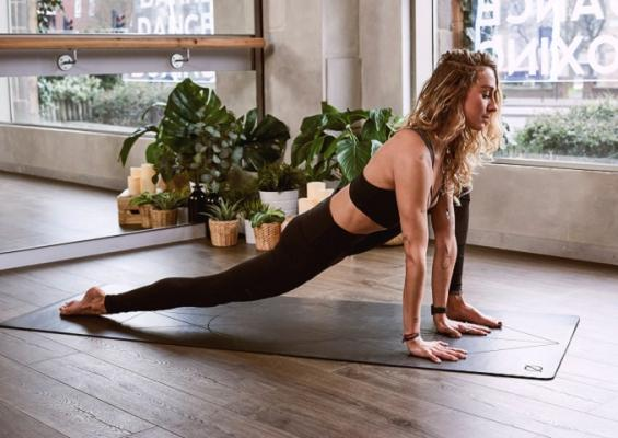 Venice, Los Angeles County Pilates Studio - Independently Owned For Sale