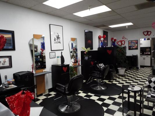 Pacifica, San Mateo Salon - Well Established Companies For Sale
