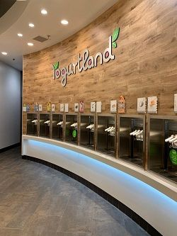 La Habra, Orange County  Yogurtland Franchise - Absentee Run For Sale