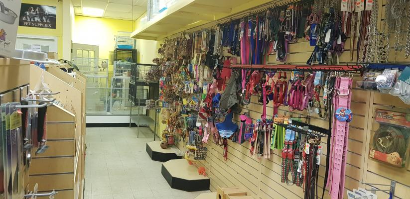 Pet Grooming And Supply Store Business For Sale