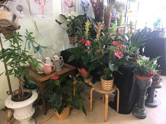 Selling A San Mateo County Flower Shop - Long Established