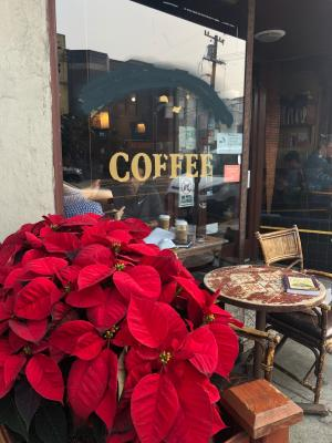 San Francisco Coffee Shop - Well Established For Sale