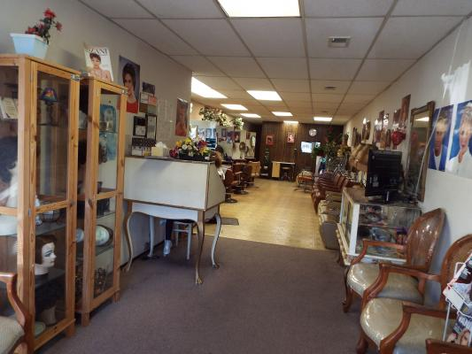 Salon, Spa - Great Excelsior District Area Business For Sale