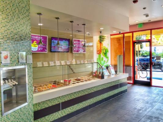 Alameda County Yogurtland Franchise For Sale