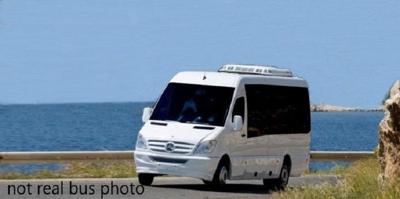 San Gabriel Travel And Tour Agency - With 6 Tour Buses For Sale