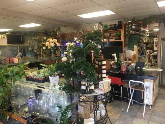 Buy, Sell A Florist Gift Shop Business
