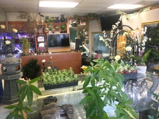 Selling A South Orange County Florist Gift Shop