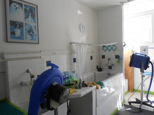Pet Grooming Salon - Established 24 Years Business For Sale