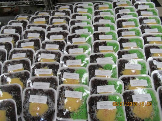 Vietnamese Desserts Wholesaler Business For Sale