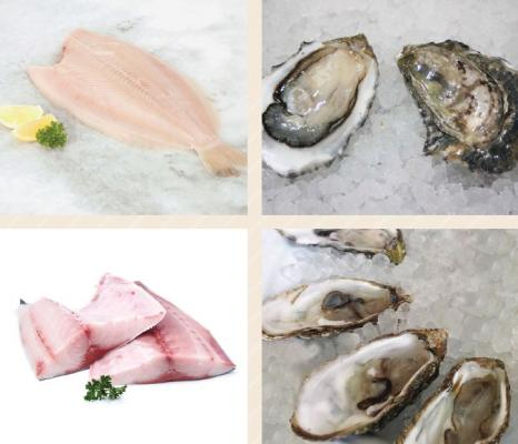 Los Angeles County Wholesale Seafood Processing Company For Sale