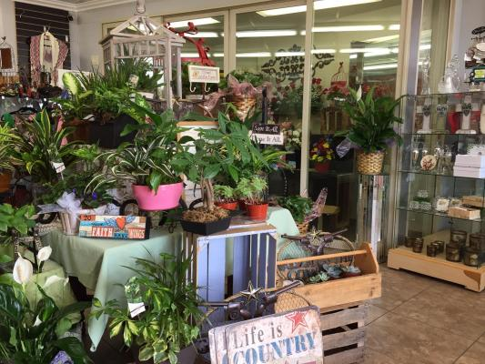 Flower Shop - Absentee Run Company For Sale