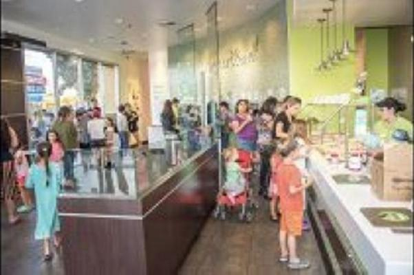 Yogurtland Franchise  Business For Sale