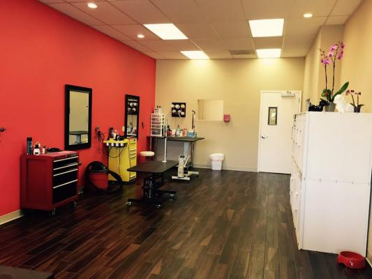 San Jose, Santa Clara County Dog Grooming Salon Service For Sale