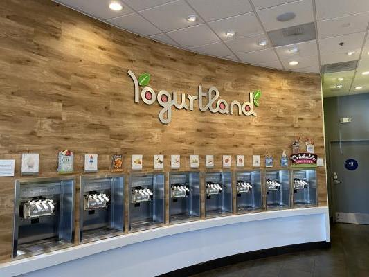 Yogurtland - Self Serve Yogurt Franchise Store Business For Sale
